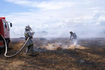 牧草地消火作業2